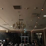 25m BC Festoon Lighting, 1m Spacing