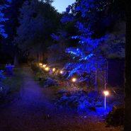 100m BC Festoon Lighting, 1m Spacing